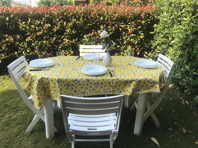 garden with furniture