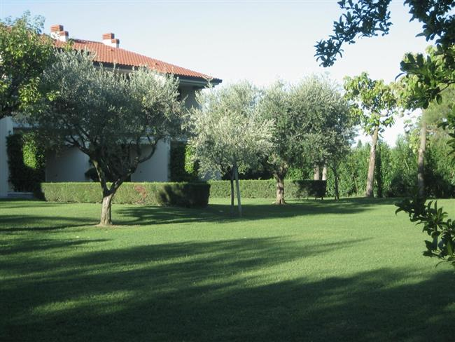 common spaces Garden